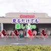 【羽島市】魅力満載「コストコ」の試食の多さに驚いた!!