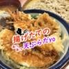 【大垣市/寺内町】岐阜には1店舗しかない天ぷらチェーン店「天丼 てんや」の店舗限定